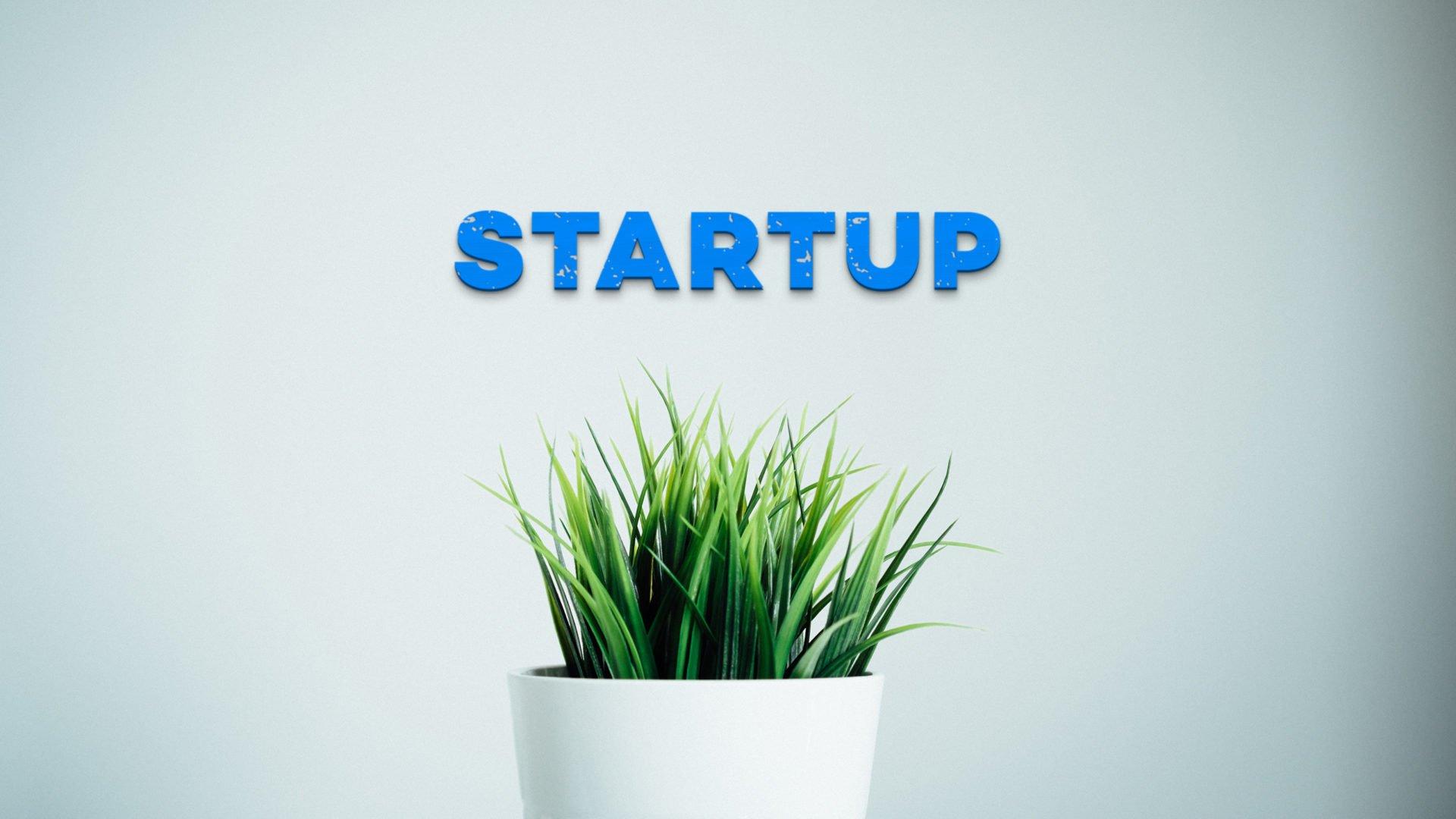 Branding per Startup